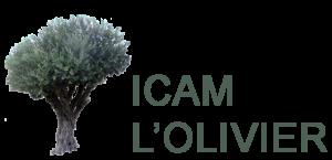 olivier-icam-short-300x145.png